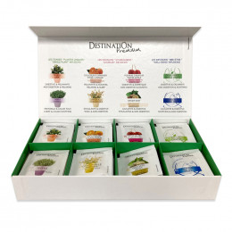 Coffret Infusion Bio - Destination Grand Comptoir - 80 sachets