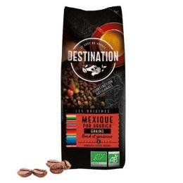 Café en Grains Bio Destination Grand Comptoir Mexique Chiapas - 1 kg